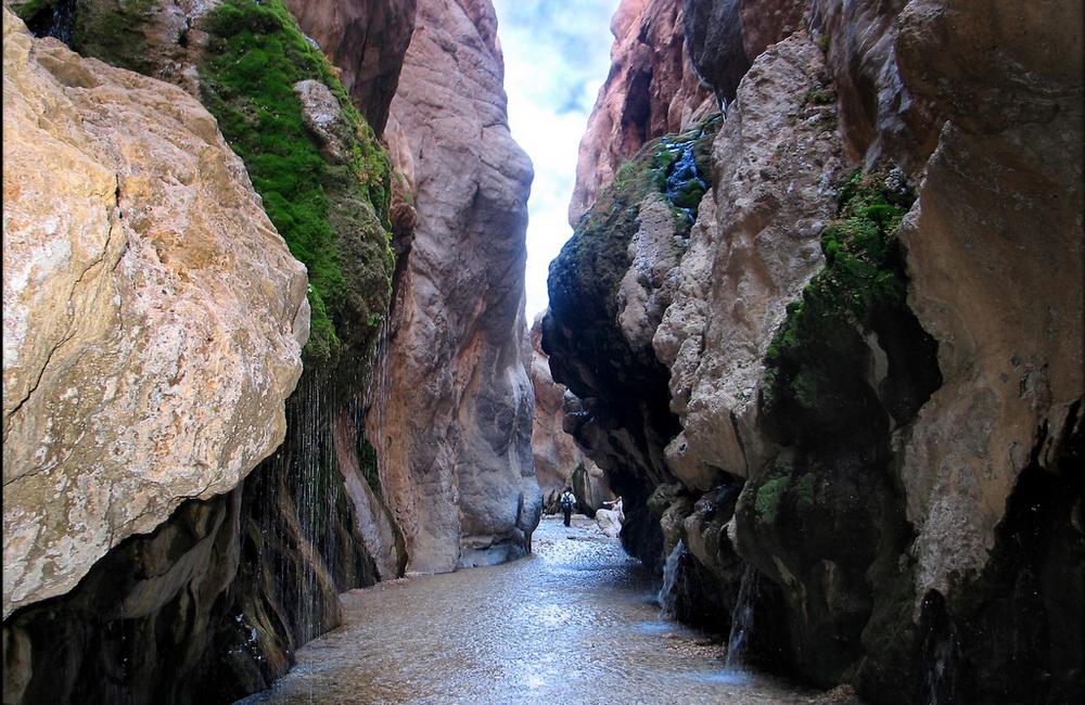 چشمه مرتضی علی